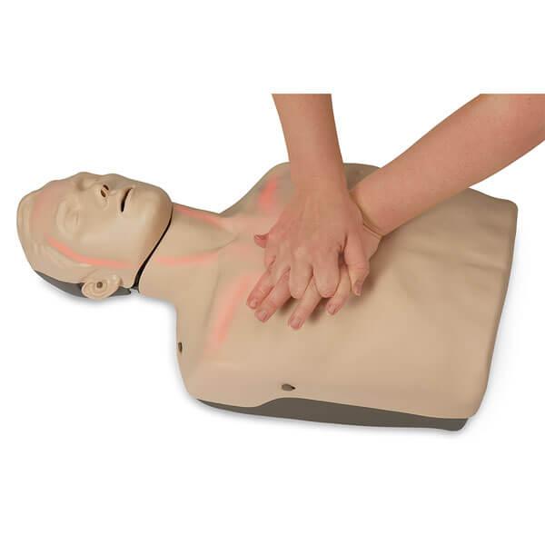 c71f6fac924 Brayden CPR Manikin - Discounted for NIFAT Members